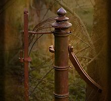 Old Gate Post by Liz Alderdice Art