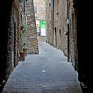 VanishingTuscan Alley by phil decocco