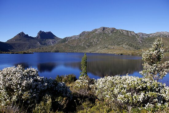 Dove Lake and Cradle Mountain, Tassie by Robert Stephens