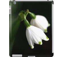 Natures Dots iPad Case/Skin
