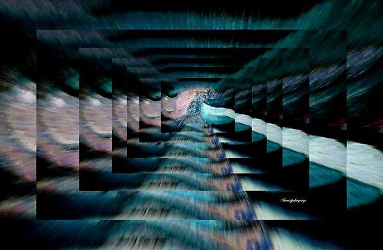 WALKING THE STEPS OF TIME by Sherri     Nicholas