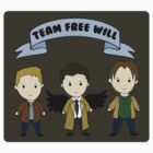 Team Free Will (stickers) by Elliott Junkyard