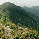 Hill Path by Pirostitch