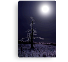 desolate moon Canvas Print