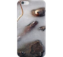 IcedPond iPhone Case/Skin