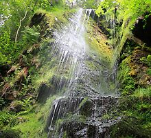 Mallyan Spout Waterfall by Lynne69