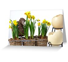 Easter eggs and daffodils Greeting Card