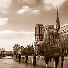 Notre Dame 1 by David Mapletoft