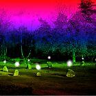Nine Ladies Stone Circle by coshvomit