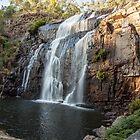Mackenzie Falls by Ron Finkel