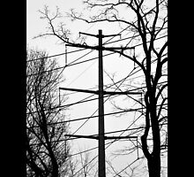 Transmission Tower Behind Nikola Tesla's Wardenclyffe Laboratory - Shoreham, New York by © Sophie W. Smith
