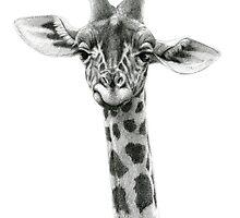 Young Giraffe G2012-053 by schukinart