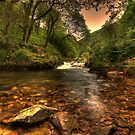 Watersmeet by Dean Messenger