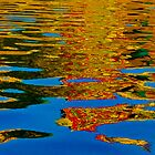 river reflection by raymona pooler