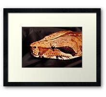 Headshot of Nemesis a big boa constrictor Framed Print
