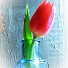 Single Tulip in a Vintage Lemonade Bottle  by AndyLanhamArt