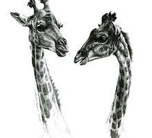 Giraffes G055 by schukinart