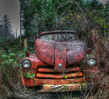 Hard Day At Work by Charles & Patricia   Harkins ~ Picture Oregon