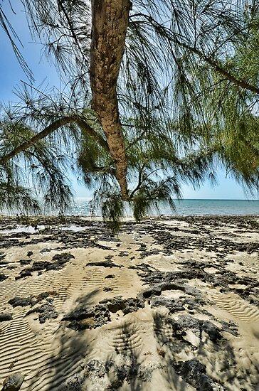Hidden from the sun on South Beach in Nassau, The Bahamas by 242Digital