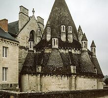 Angevin Pantry 1570 Fontevraud Abbey 198402230008  by Fred Mitchell