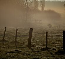 Fence in the mist by Michelle Hardy  Photography