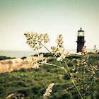 Gay Head Lighthouse, Aquinnah, Martha's Vineyard by Elizabeth Thomas