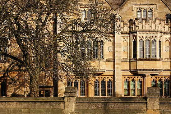 Magdalen College, Oxford by Irina Chuckowree
