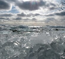 Polished Ice by Mark Read