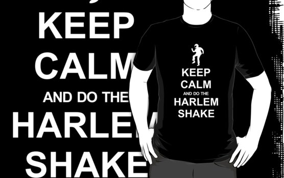 Harlem Shake T-shirt by racooon