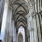 The Cathedral at Rouen (2) by Larry Davis