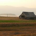 Old Idaho Barn in a Haze by BrianAShaw