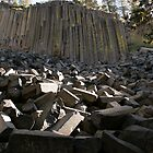 Devil's Postpile, Bishop CA by Maurine Huang