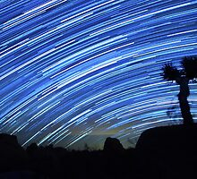 Star Trails Sweep Over Joshua Tree Night Desert by Gavin Heffernan