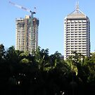 thee cranes ov Brisbane 2013 DAILY TOUR - Day 50 by Craig Dalton