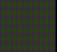 00037 Ferguson Clan Tartan Fabric Print Iphone Case by Detnecs2013