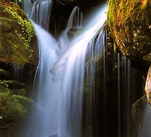 CASCADE by Chuck Wickham