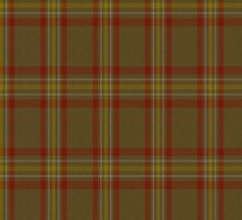 00048 Reid Clan Tartan Fabric Print Iphone Case by Detnecs2013