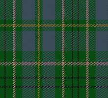 00053 Taylor Clan Tartan Fabric Print Iphone Case by Detnecs2013