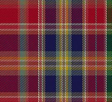 00059 Hunter Clan Tartan Fabric Print Iphone Case by Detnecs2013