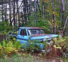 Rust and remember 2 by Carolyn Clark