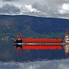 Norwegian Red Longboat by appfoto