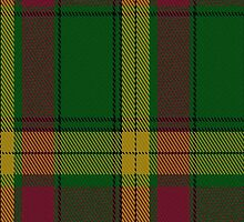 00079 MacMillan (Ancient) Clan Tartan Fabric Print Iphone Case by Detnecs2013