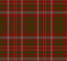 00080 Macintosh (Ancient) Clan Tartan Fabric Print Iphone Case by Detnecs2013