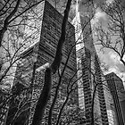 NYC in black and white by ArtLandscape