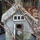 Rickety Bird House by TCbyT