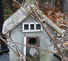Rickety Bird House by TCbyT