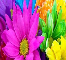 Flower Pattern 5 by jmkay9876