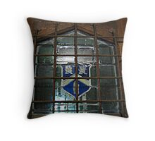 Glass Window on Front Door, Kips Castle Throw Pillow