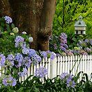 "My Garden ""Rosalee"" by Gabrielle  Lees"