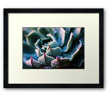 There's Glory in the Little Things Framed Print